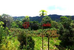 厄瓜多尔因巴布拉省Cotacachi的房产,Intag area,编号28067367