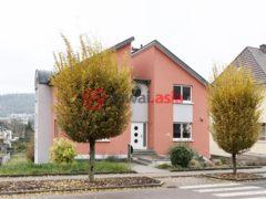 居外网在售卢森堡Mertert4卧2卫的房产总占地1245平方米EUR 1,295,000
