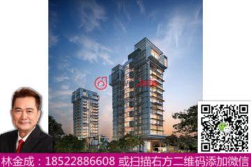 中星加坡房产房价_新加坡房产房价_居外网在售新加坡1卧1卫新开发的房产总占地59平方米SGD 1,130,000