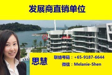 居外网在售新加坡4卧4卫新开发的房产总占地39019平方米SGD 6,480,000