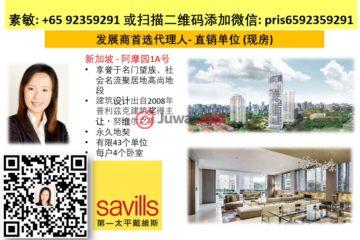 中星加坡房产房价_新加坡房产房价_居外网在售新加坡4卧5卫新开发的房产总占地5621平方米SGD 20,000,000