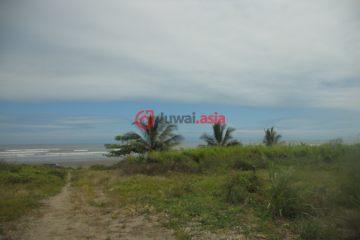居外网在售厄瓜多尔RocafuerteUSD 20,000,000总占地1210000平方米的土地