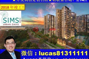 新加坡新加坡3卧2卫新房的房产