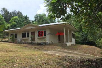 居外网在售帕劳3卧2卫原装保留的房产总占地1000平方米USD 2,000 / 月