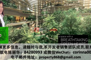新加坡新加坡1卧1卫的房产