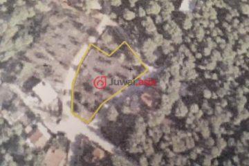 居外网在售希腊EUR 120,000总占地1125平方米的土地