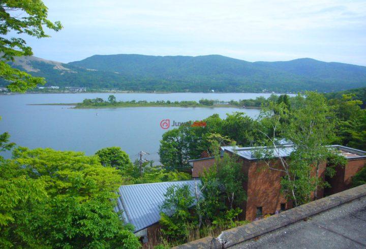 日本的房产,赤芝,编号37245761