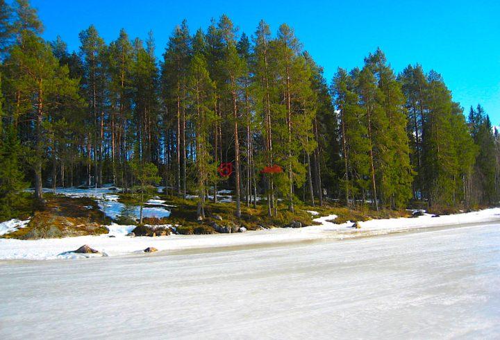 芬兰Kajaani的房产,卡亚尼,编号37371344