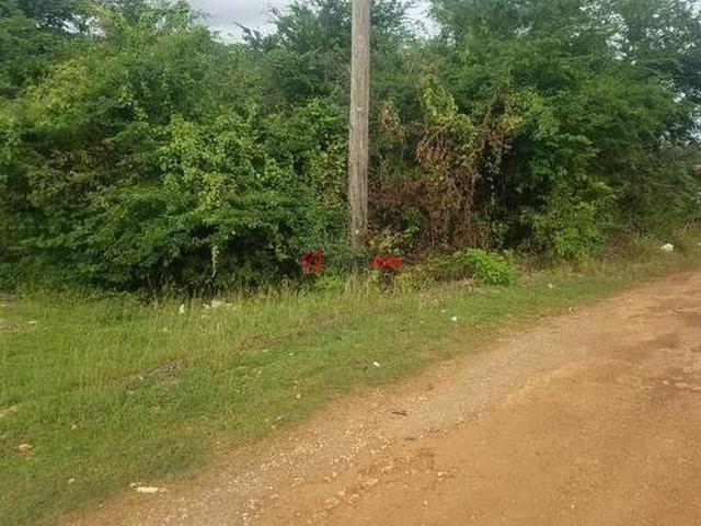 牙买加的房产,编号37256770