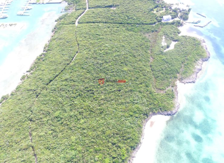 巴哈马的房产,Aunt Pat's Creek Acreage White Sound,编号36486239