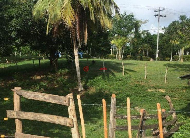 哥伦比亚梅塔的房产,46 A Carrera Kilometro 1-176,编号32804500