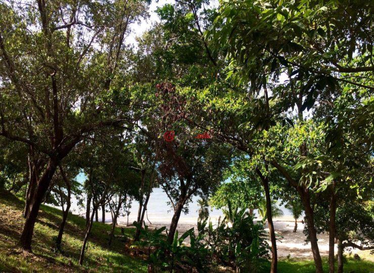 洪都拉斯海湾群岛瓜納哈島的房产,La Giralda,编号34625759